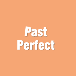Juego past perfect